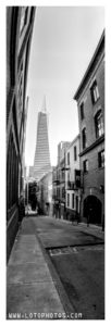 The Transamerica Pyramid and terraPin Kaiju 6x19 camera, 86mm, f/215 with Fuji Acros
